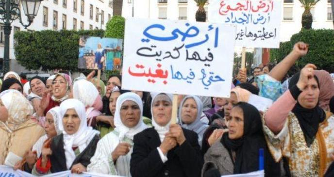 عريضة لإسقاط شرط الإقامة للاستفادة من الأراضي السلالية في المغرب