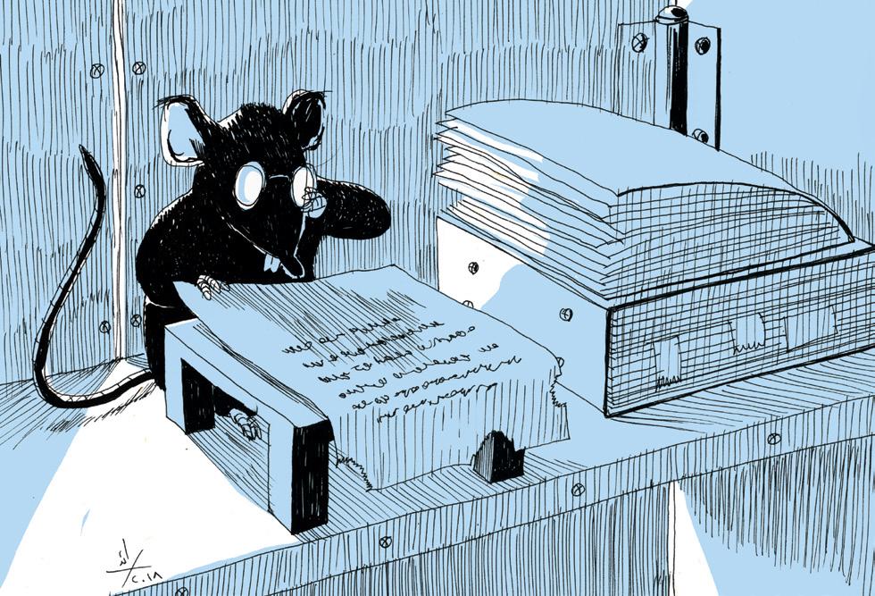 هل يكفل المشرع المصري أخيراً الحق في تداول المعلومات؟