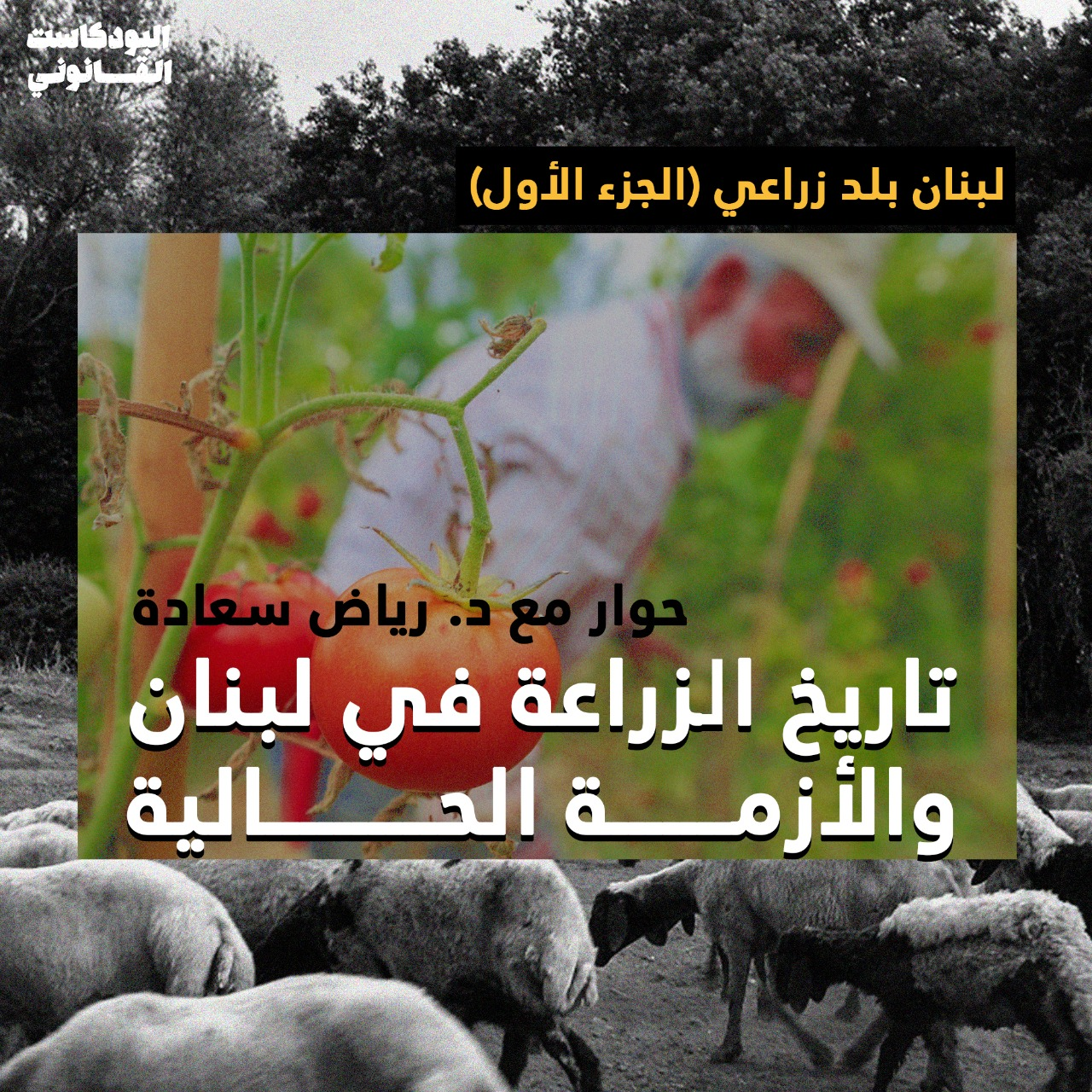 Qanuni Podcast (S02 E32): لبنان بلد زراعي (الجزء الأول): تاريخ الزراعة في لبنان والأزمة الحالية