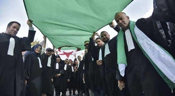 نقابة القضاة بالجزائر تنتخب قياداتها الجديدة: انتصار قضاة الحراك ووعود بخدمة الشعب