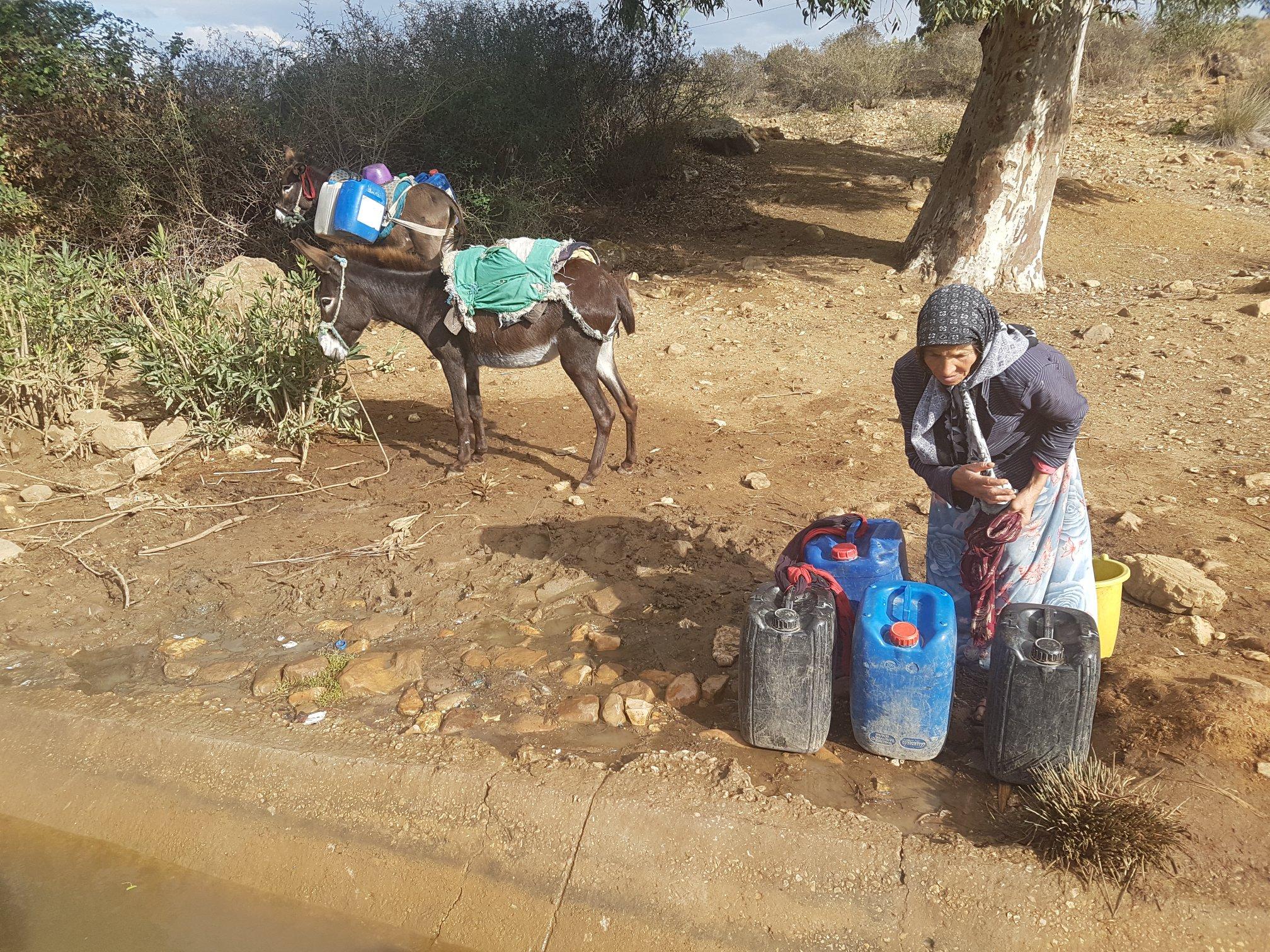 """أزمة الماء في تونس: مشروع حكومي لمجلة مياه """"جافة"""" ومبادرة مواطنية لطرح البديل"""