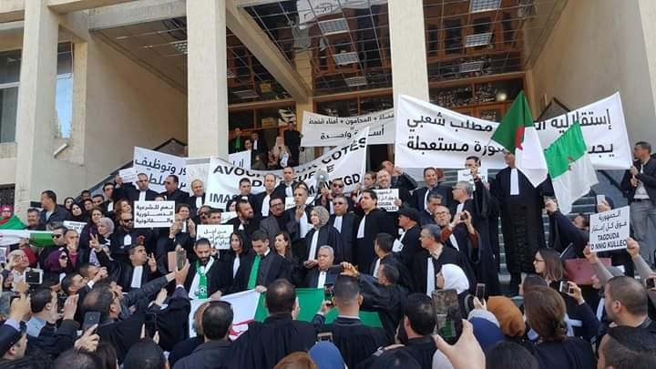 قضاة الجزائر يكسرون واجب التحفظ: التحفظ خيانة حينما يتعلق الأمر بمصير الشعب الذي نحكم باسمه