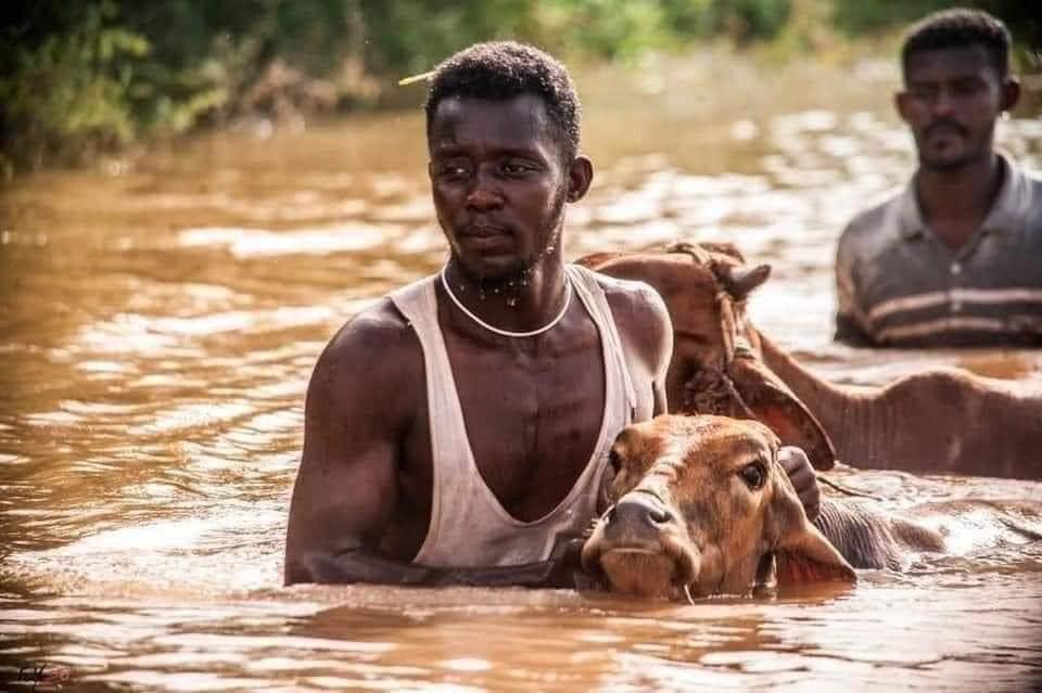 """""""المفكرة"""" ترسم خريطة """"غضب"""" النّيلَين على أهل السودان..الفيضانات تقتل مئة شخص وتهجّر نصف مليون حتى اليوم"""